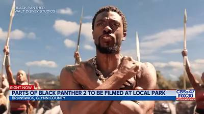 Parts of Black Panther 2 to be filmed at Brunswick park