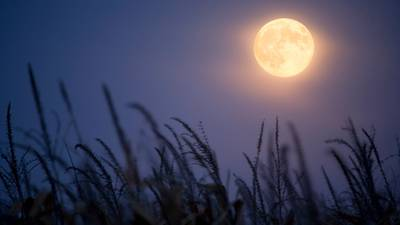 Harvest Moon to shine as fall brings on earlier nights