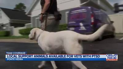Jacksonville organizations help veterans cope with current events in Afghanistan