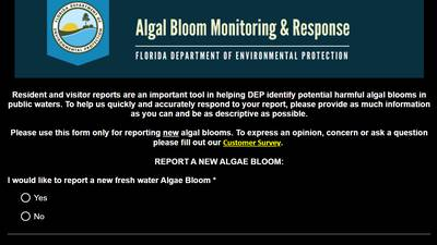 Blue green algae found in parts of St. Johns River: Here's how you can report an algae bloom